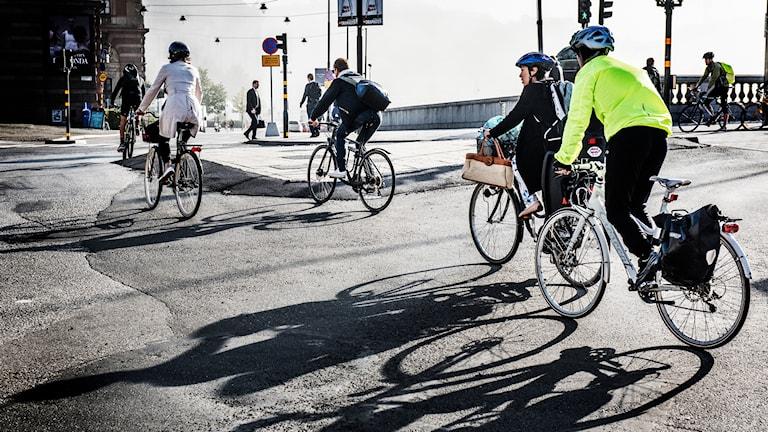 Cyklister i Stockholm. Foto: Tomas Oneborg/TT.