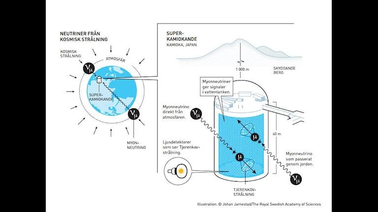 Nobelpriset i fysik. Illustration: Johan Jarnestad/Svenska vetenskapsakademin