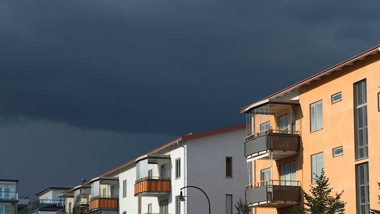 Mörk himmel ovanför lägenhetshus. Foto: Lars Pehrson/TT.