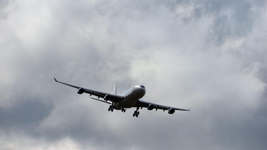 Flygplan i luften. Foto: Johan Nilsson/TT