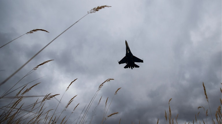 Arkivbild, tagen den 15 oktober 2015. Ett ryskt plan ska landa i Kubinka. Foto: AP Photo/Pavel Golovkin/TT.