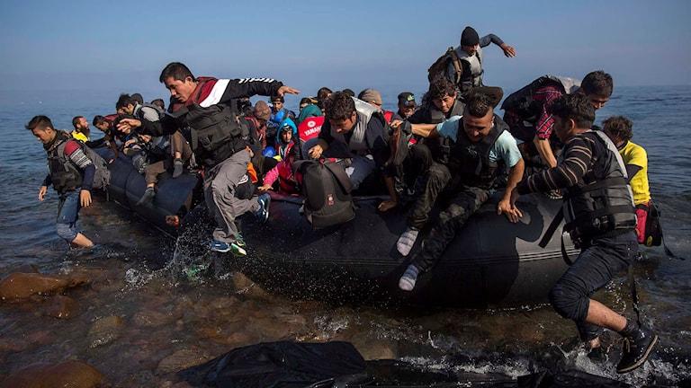 Flyktingar och migranter som går i land på Lesbos. Foto: Santi Palacios/TT.