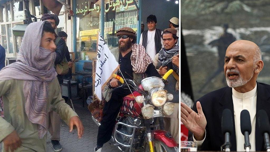 Talibanstyrkor med milisens flagga och den afghanska presidenten Ashraf Ghani. Foto: TT.