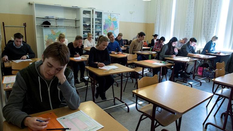 Provskrivare gör Högskoleprovet. Foto: Bertil Enevåg Ericson / TT