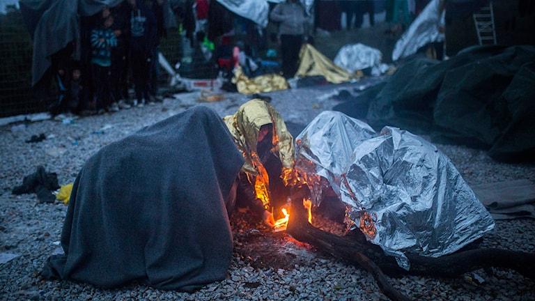 Flyktingar försöker värma sig på den grekiska ön Lesbos. Foto: Santi Palacios/TT.