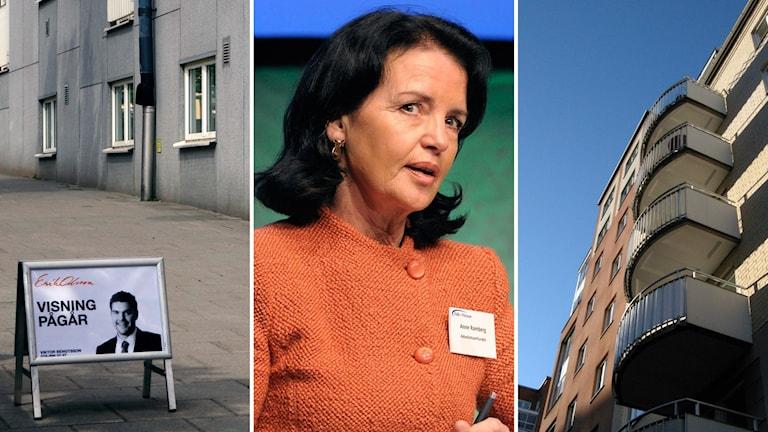 Anne Ramberg kritiserar regeringens förslag på amorteringskrav. Foto TT