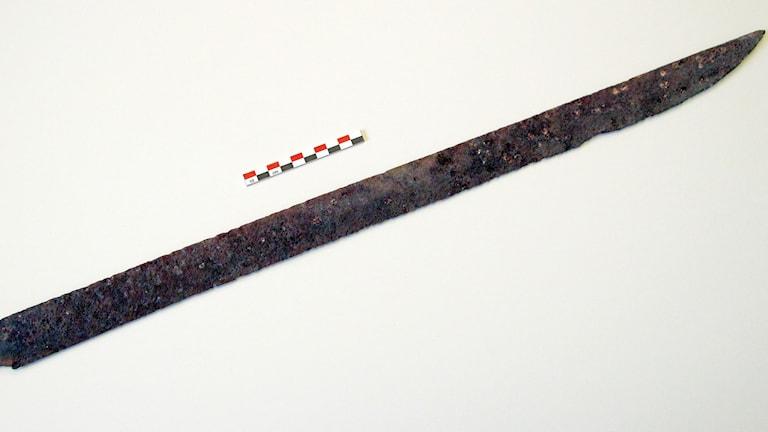 I de norska bergen har ett 1 200 år gammal svärd hittats av en fjällvandrare. Foto: Bjarte Brask Eriksen/TT.
