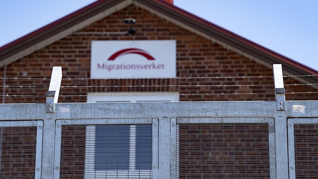 Taggtråd utanför Migrationsverkets förvar.