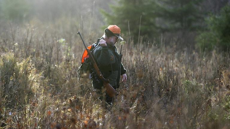Jägare i skogen