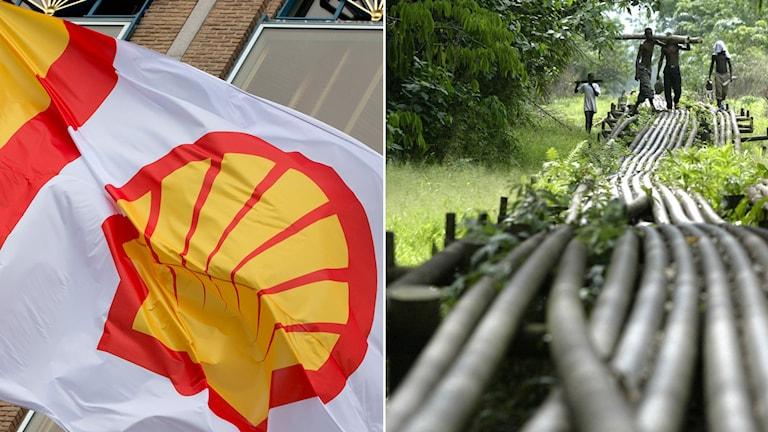Shells logga och oljeledning i Nigeria. Foto: Peter Dejong/AP, George Osodi/AP