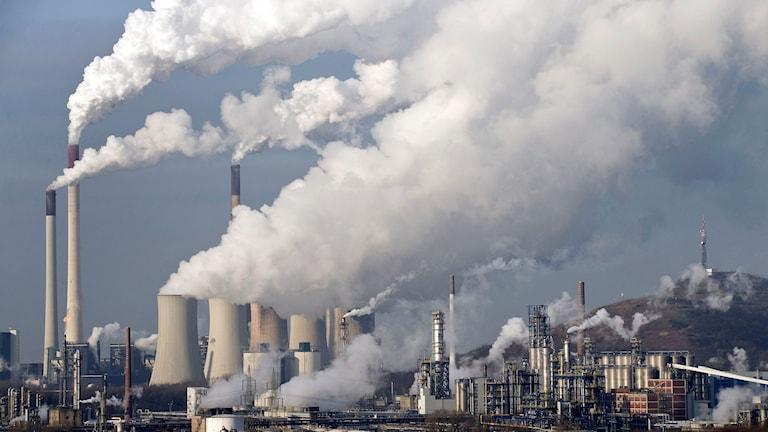 Kraftigt rykande kolkraftverk i Gelsenkirchen, Tyskland. Foto: Martin Meissner/TT