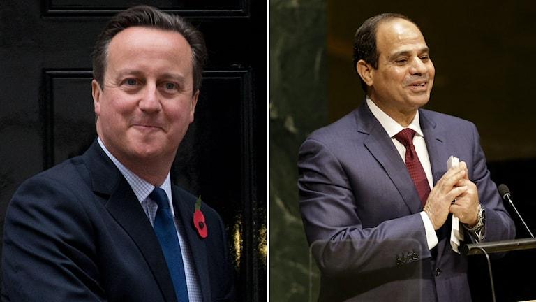 Storbritanniens premiärminister David Cameron och Egyptens president Abdel Fattah al-Sisi Foto: Matt Dunham och Seth Wenig/ AP