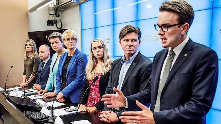 Medlemmar från regeringen och Alliansen. Foto: Tomas Oneborg/TT.
