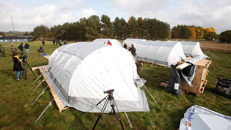 Tält för flyktingar i Sverige. Foto: Drago Prvulovic/TT.
