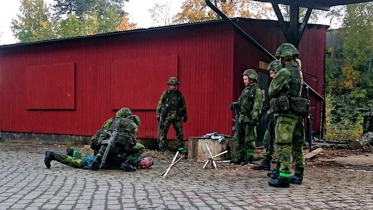 Streitkräfte Foto: Johannes Ledel/Sveriges Radio.