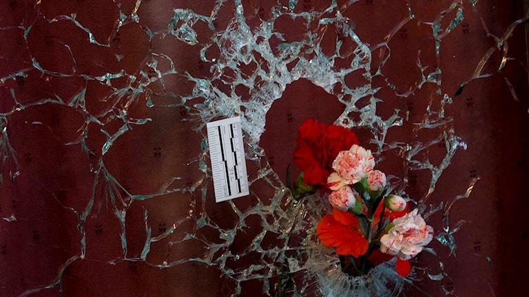 Blommor son någon stuckit in i ett fönster vid en av attentatsplatserna i Paris. Foto: ter Dejong/TT.