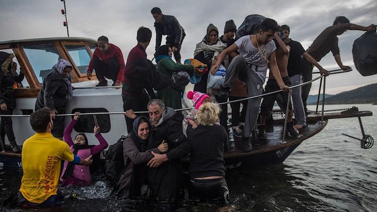 Flyktingar får hjälp kliva ur en båt och komma i land på den grekiska ön Lesbos. Foto: Santi Palacios/AP/TT.