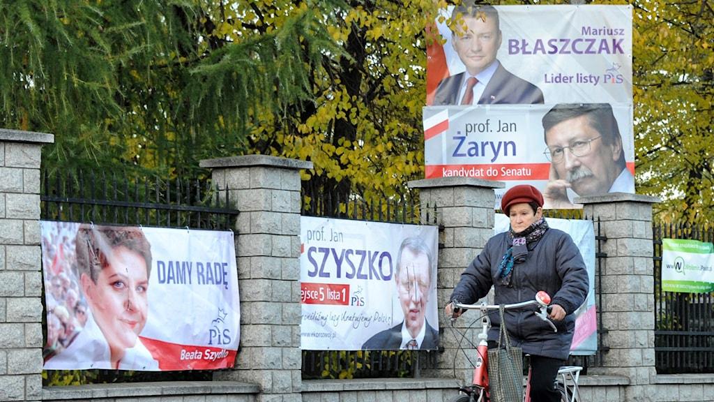 Kvinna cyklar förbi valaffischer för partiet Lag och Rättvisa. Foto: Alik Keplicz/TT.