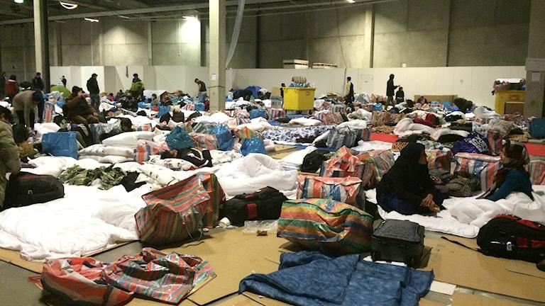Bilden visar asylsökande i Malmömässan, som blivit första ankomsthall för asylsökande som kommer till Malmö. Folk tvingas övernatta på golvet, med endast kartong som liggunderlag. Foto: Anna Bubenko/Sveriges Radio.