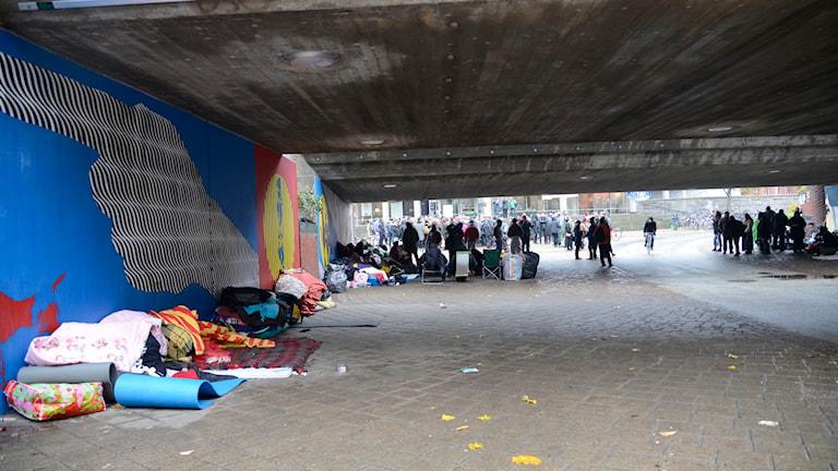 EU-migranter i Malmö. Foto: Daniel Kihlström/TT.