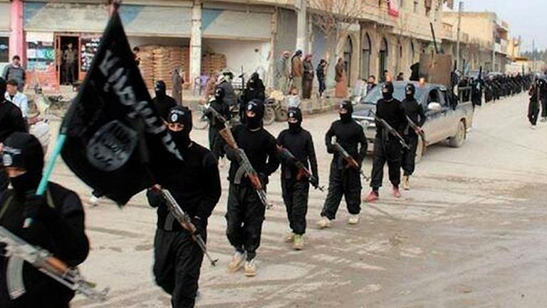Arkivbild, IS i Raqqa, Syrien. Foto: TT.