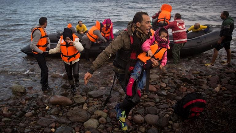 En man skriker när han når land på ön Lesbos med din dotter i famnen. Foto: Santi Palacios/AP