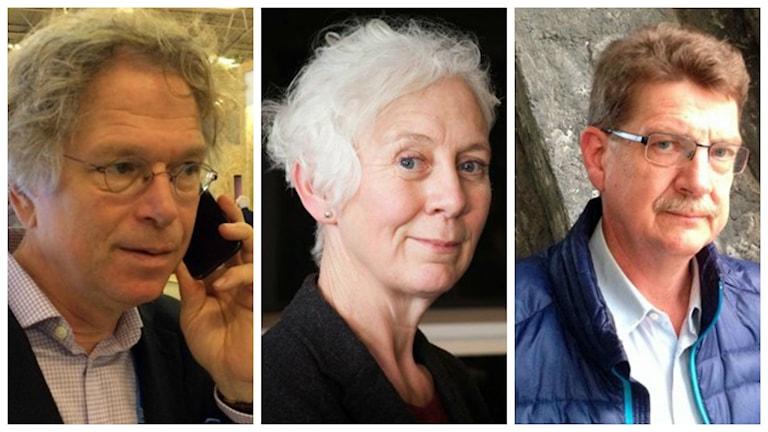 Forskarna Björn-Ola Linnér, Michael Tjernström och Ekots Miljöreporter Annika Digreus svarar.