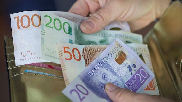 Plånbok med de nya svenska sedlarna. Foto: Fredrik Sandberg/TT.