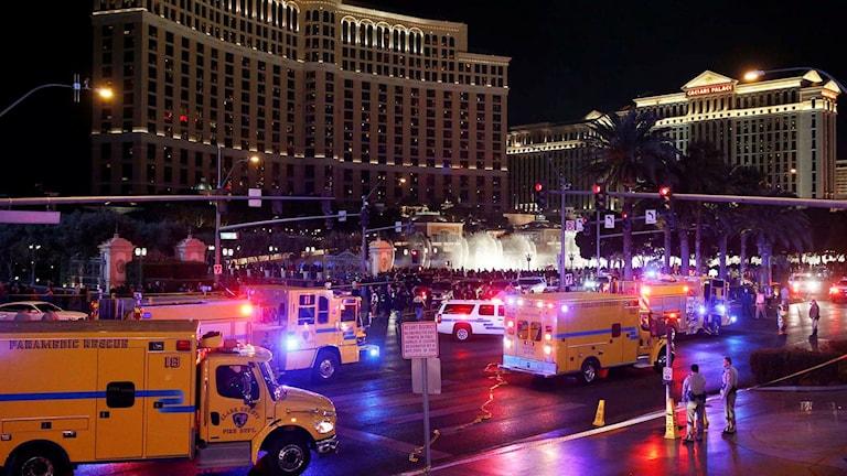 Bilolycka i Las Vegas. Foto: TT
