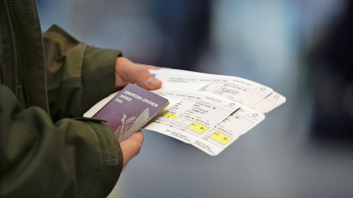 Flygbiljetter i hand. Foto Fredrik Sandberg/TT.