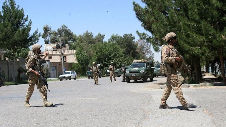 Afghanska styrkor är under hårt tryck från en talibanoffensiv i Helmandprovinsen. Arkivbild: Abdul Khaliq/AP/TT.