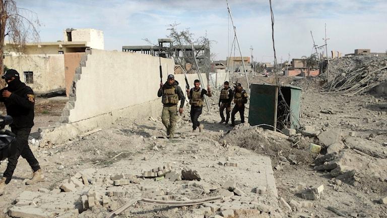 Irakisk militär intar den bombade staden Ramadi.