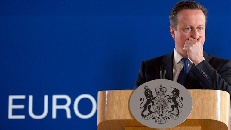 David Cameron tar en paus under ett tal i Bryssel.