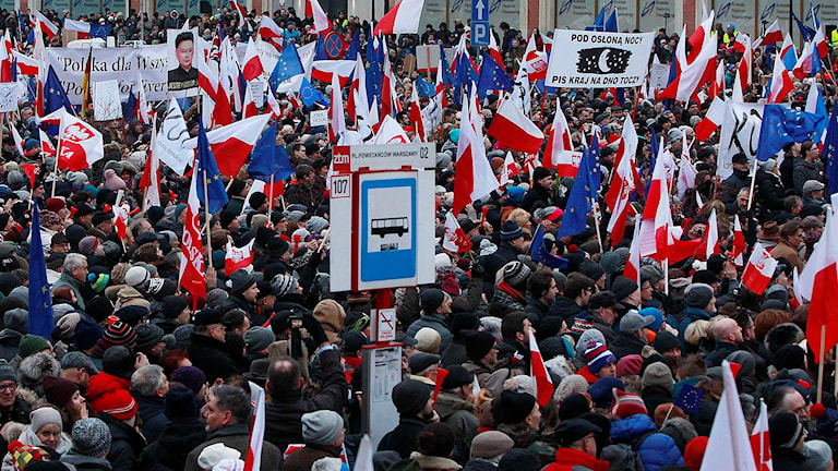 Demonstranter i Polen. Foto: Czarek Sokolowski/TT.