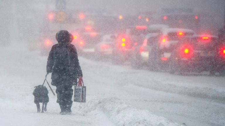Snö på Katarinavägen i Stockholm. Ett kraftigt snöfall över Stockholmsregionen har orsakt stora problem i trafiken. Foto: Jessica Gow / SCANPIX /