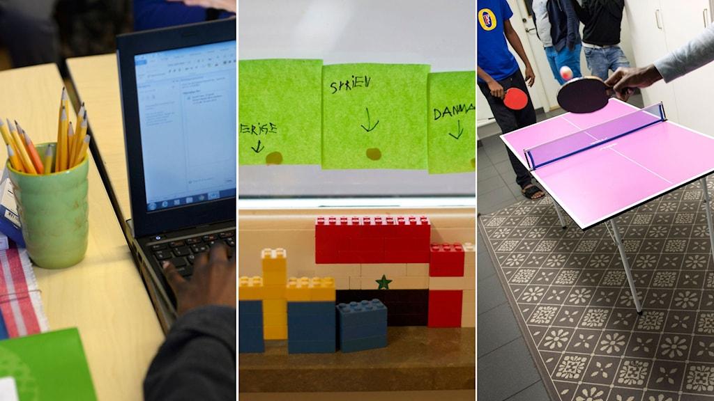 Plastglas med blyerstpennor och elev som sitter och skriver på dator. Lego byggt som flaggor från Sverige, Syrien och Danmark. Nyanlända spelar pingis. Foto: TT. Montage: Sveriges Radio.