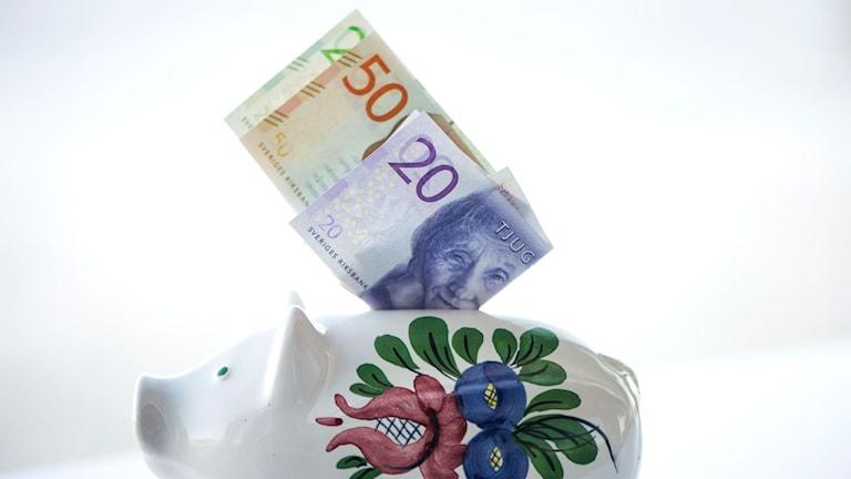 Svenskarnas sparande i fonder fortsätter att öka. Foto: Fredrik Sandberg / TT