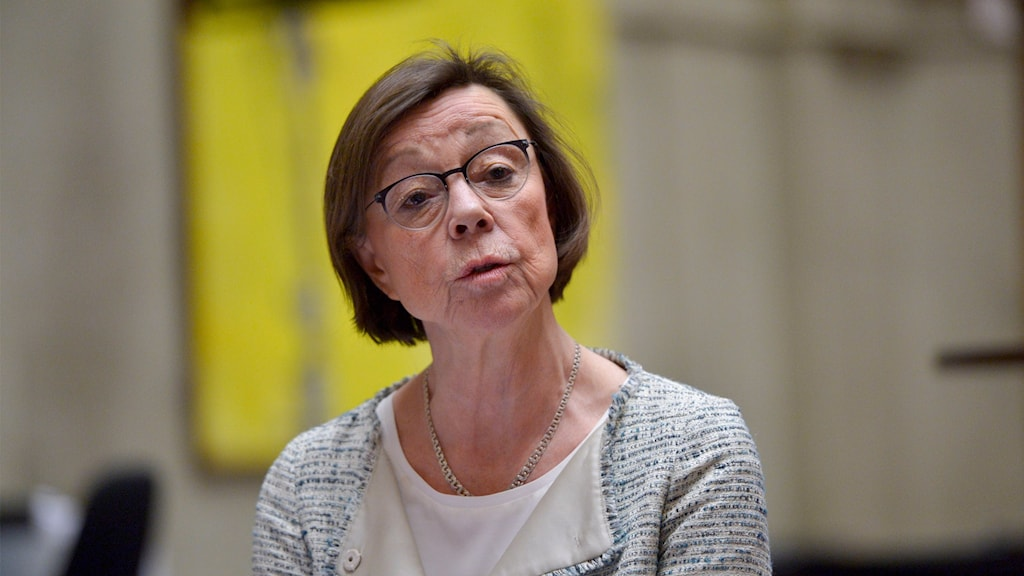 UD:s kabinettsekreterare Annika Söder berätter om Sveriges hållning i frågan om Västsaharapolitiken vid en presskonferens på UD:s internationella presscenter.