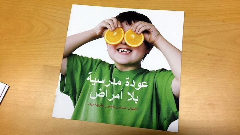 En broschyr om forskningsprojektet. Foto: Mona Hambraeus/Sveriges Radio.