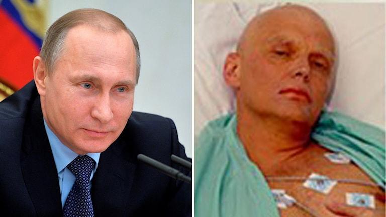 """Putin """"godkände troligen"""" mordet på Alexander Litvinenko. Foto: TT"""