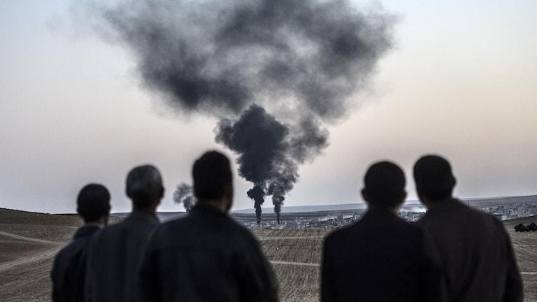 Rökpelare från syriska staden Kobane.