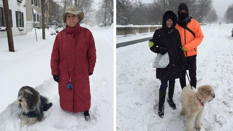 En kvinna står i snön med sin hund. En kvinna och en man är ute och går i snön med en annan hund. Foto: Inger Arenander/Sveriges Radio.