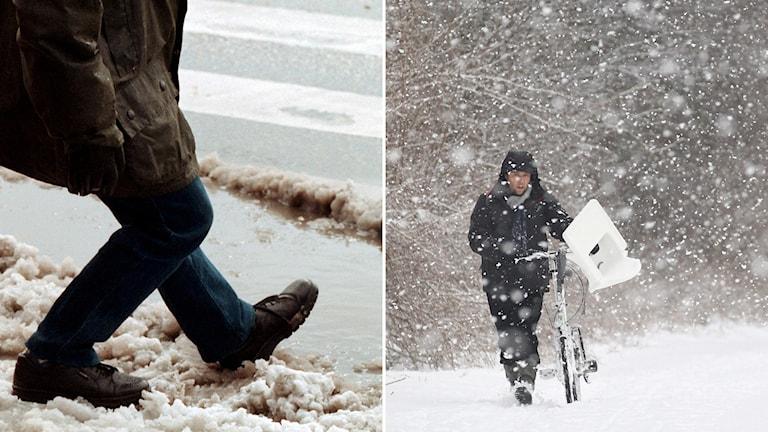 Slask och snö. Foto: Björn Larsson Ask/TT, Yves Logghe/AP/TT