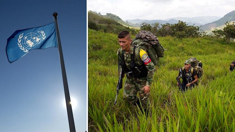 Bildmontage Farc-gerillan och FN-flagga.