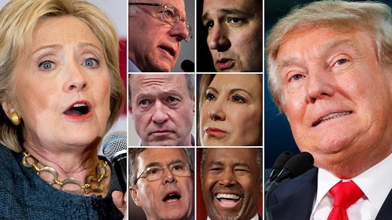 Hillary Clinton (Dem), Bernie Sanders (Dem), Martin O'Malley (Dem), Jeb Bush (Rep), Ted Cruz, (Rep), Carly Fiorina (Rep), Ben Carson (Rep), Donald Trump (Rep). Foto: Andrew Harnik/Jae C. Hong/Matt Rourke/Chuck Burton/Paul Sancya/TT.
