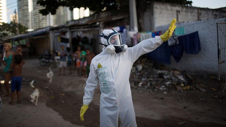 Foto: Felipe Dana/AP