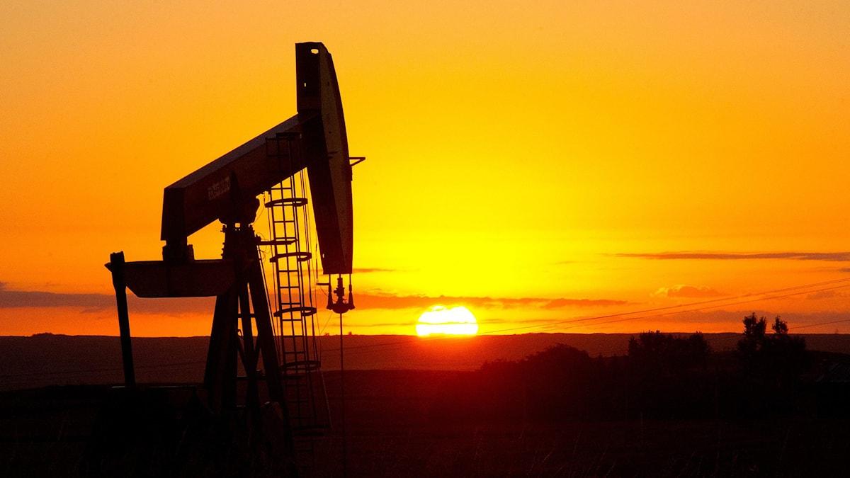 Oljefält i USA. Foto: Karen Bleier/TT.