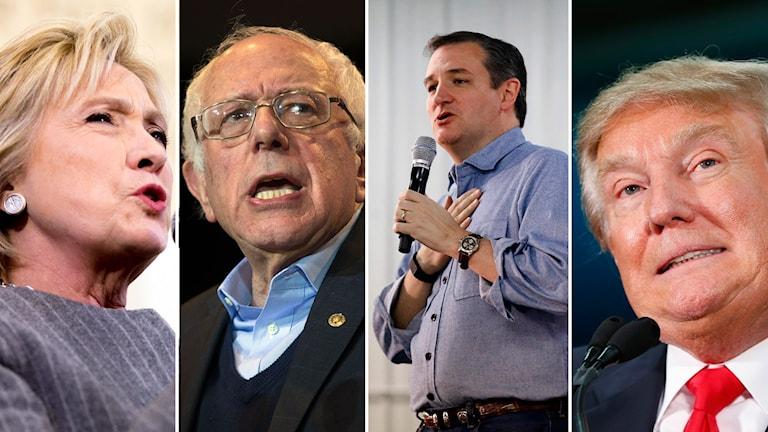 Clinton, Sanders, Cruz och Trump. Foto: Andrew Harnik, Evan Vucci, Paul Sancya / TT.