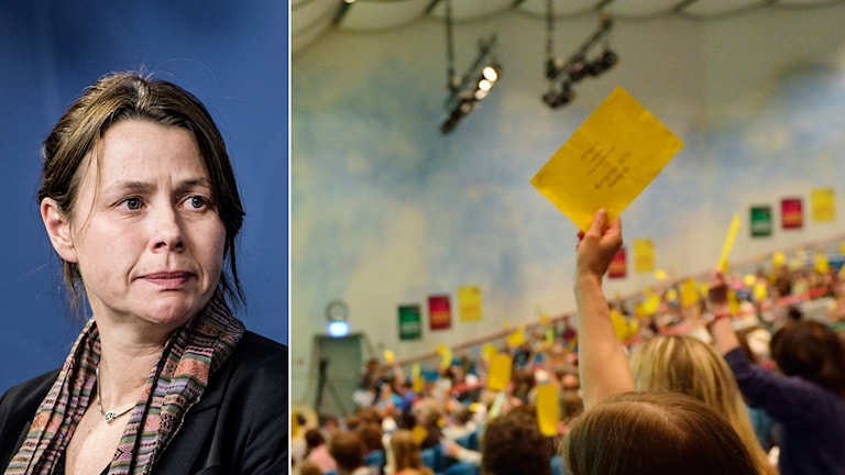 Det blir ingen omröstning om flyktingpolitiken inom Miljöpartiet. Foto: Lars Pehrson/SvD/TT, Henrik Montgomery/TT
