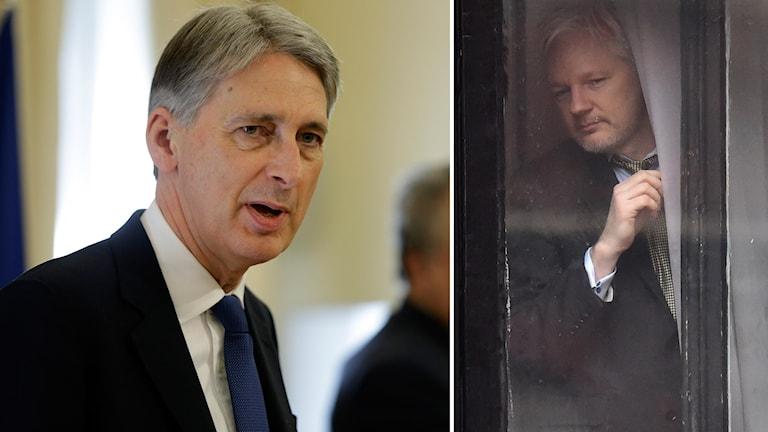 Bildmontage Philip Hammond och Julian Assange